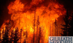 Sid Gilreath Speaks Out About Gatlinburg Wildfire Lawsuits Against Feds